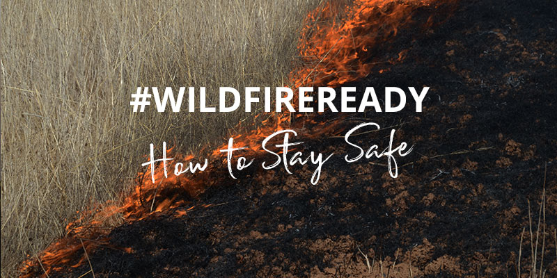How to stay safe when a wildfire threatens